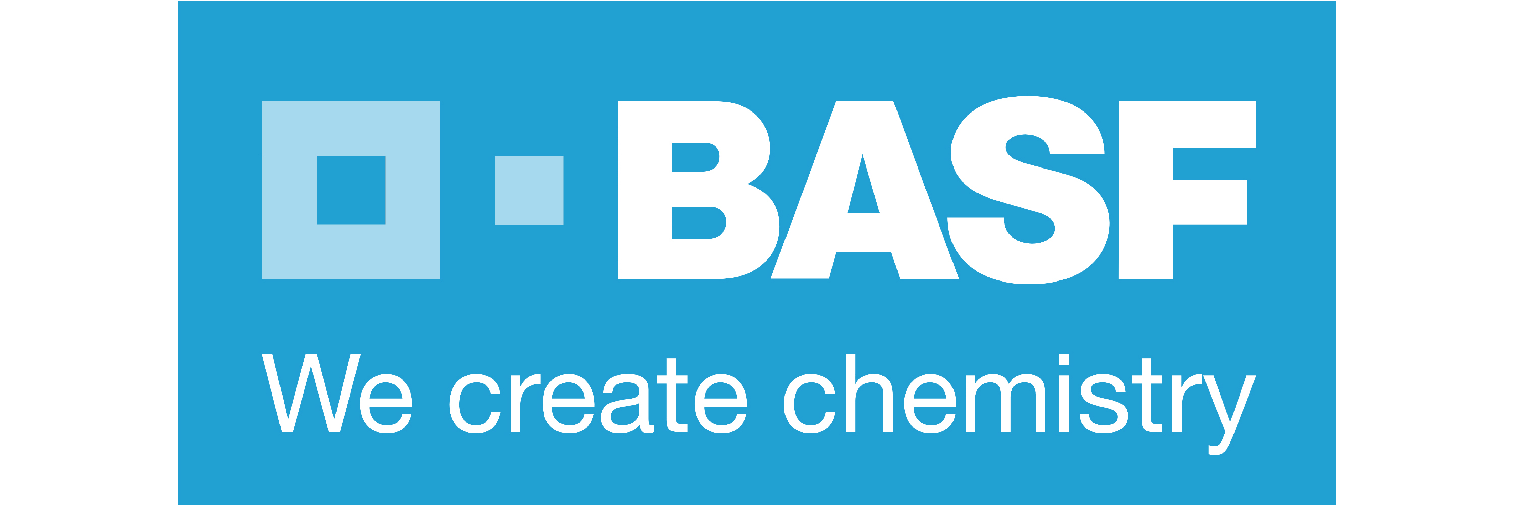 BASF logo English Link School