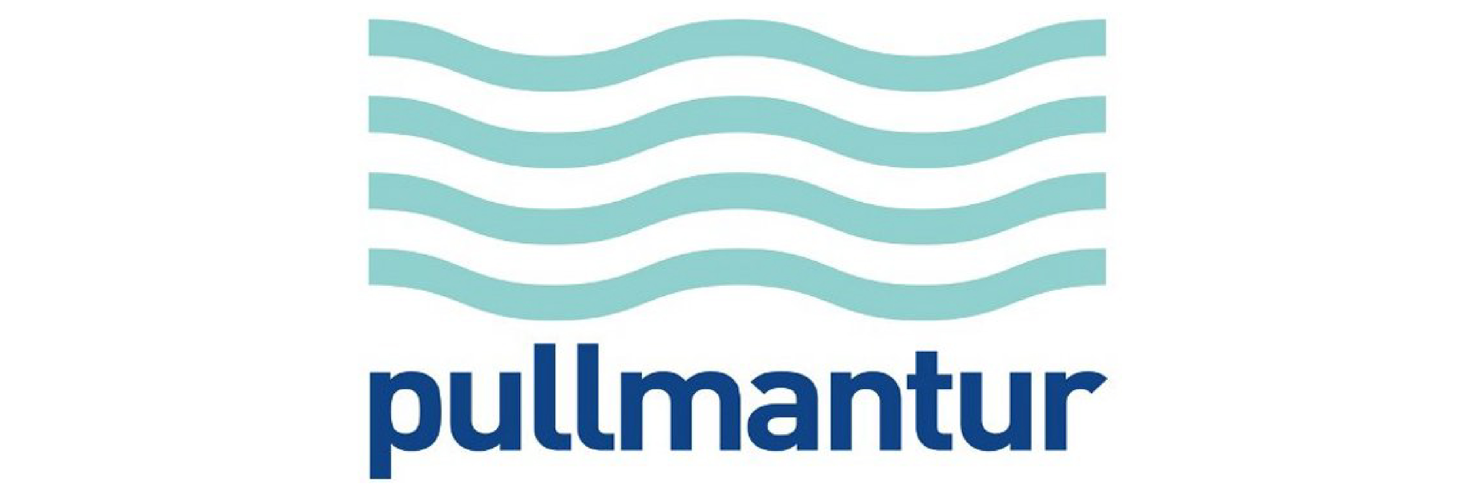Pullmantur English Link School